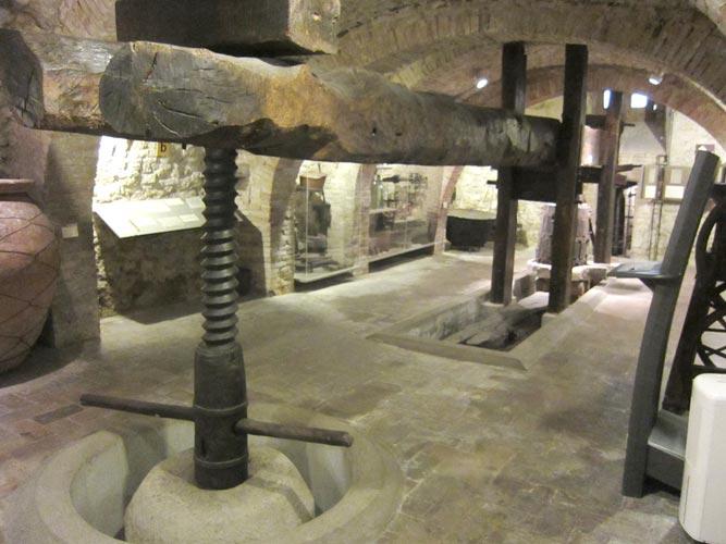 Torginao - Museo del Vino